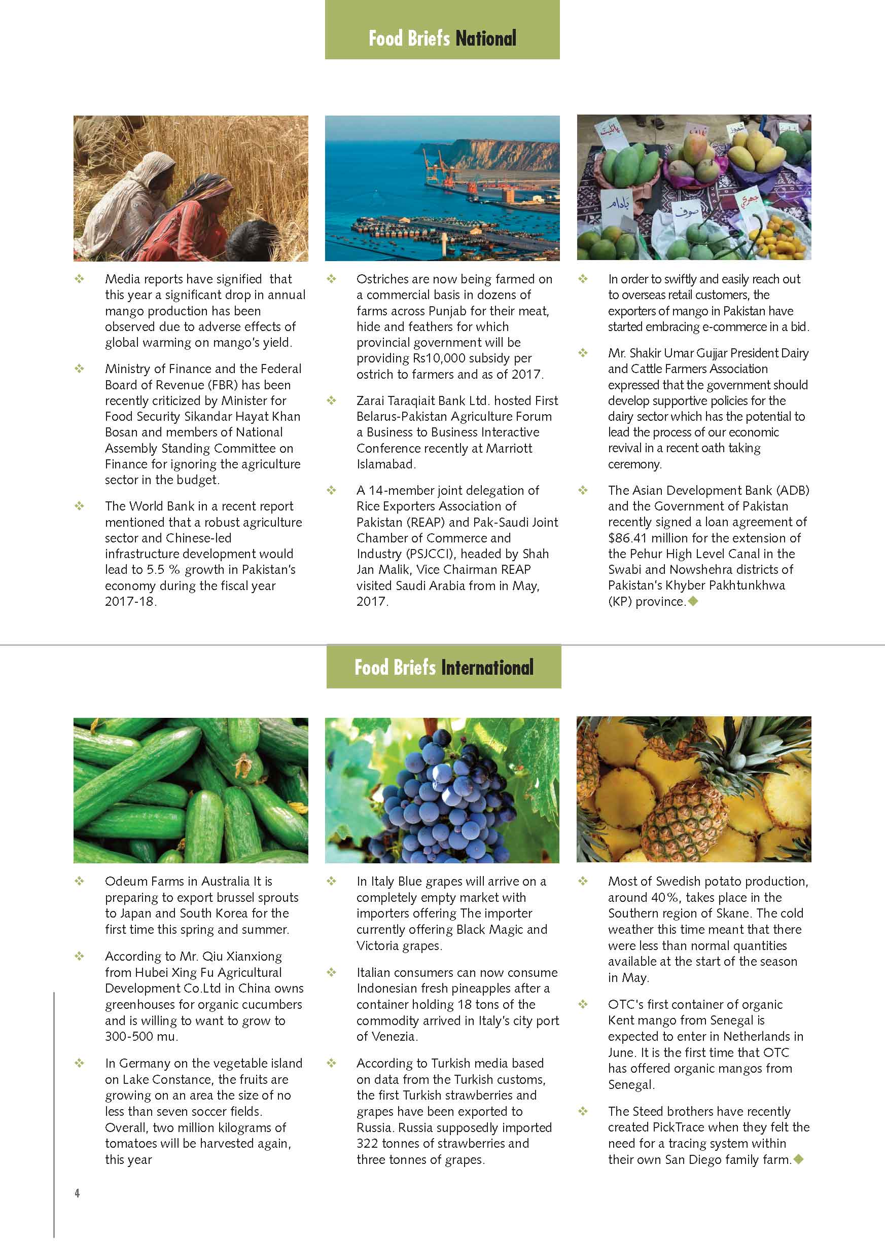 Grapes Importers In Russia